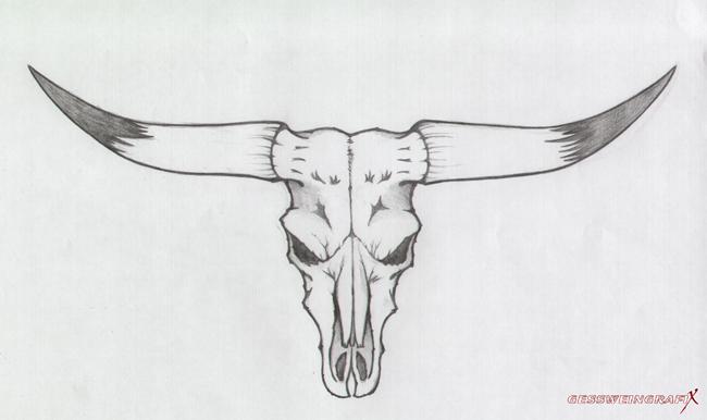 49_longhorn_bild